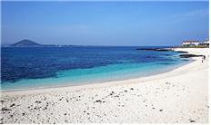 올 여름엔 한적한 해수욕장으로 떠나보자!