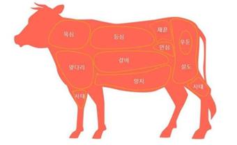 육즙 많이 고여있는 소고기는 피하세요